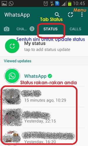 whatsapp skrin status
