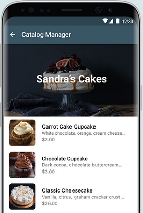 whatsapp business papar katalog